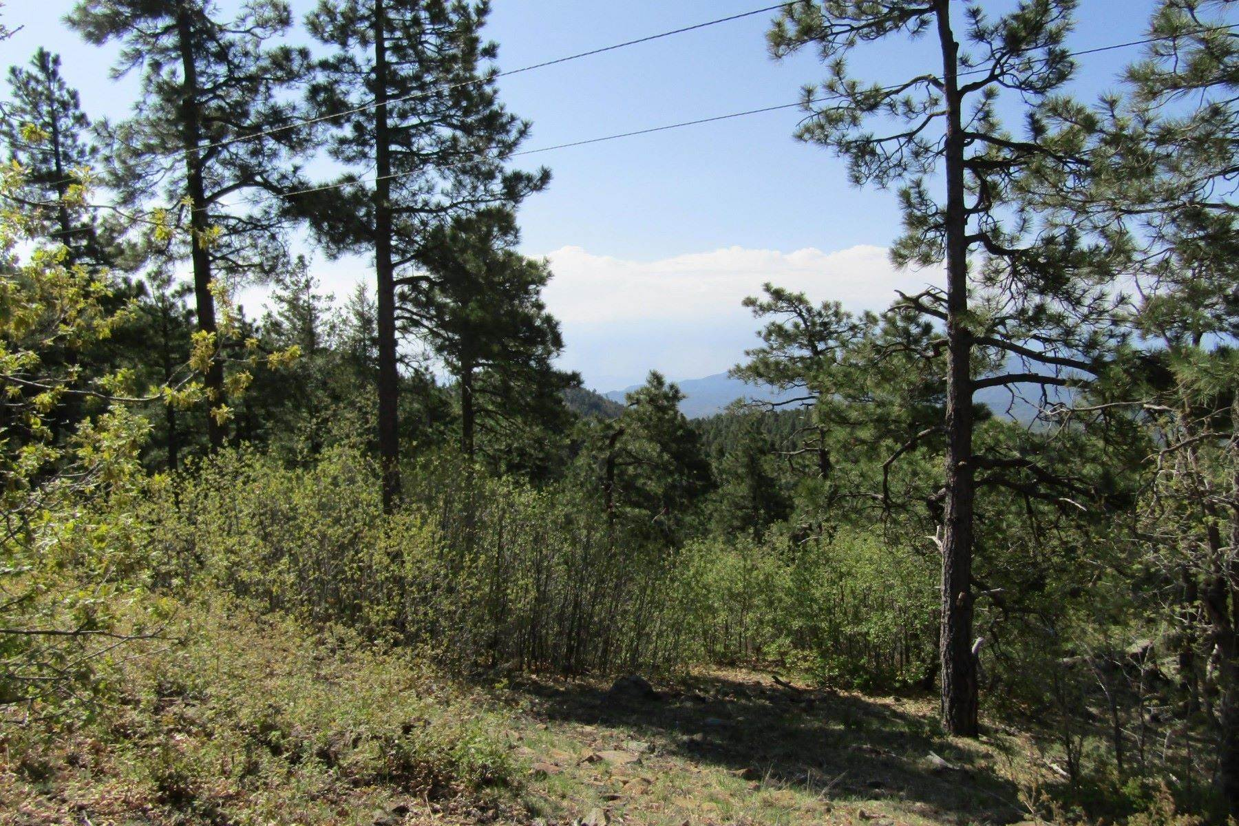 Land for Sale at Build Your Dream Cabin 261A E Forest Service Rd Prescott, Arizona 86305 United States